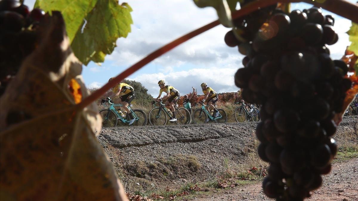 Les bicicletes són per a l'estiu