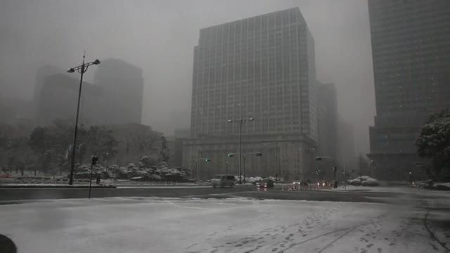 Les fortes nevades registrades avui a Tòquio han activat l'alerta més important per aquest fenomen meteorològic en quatre anys.