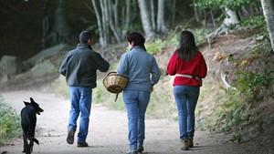 Una familia sale a buscar setas por el Montseny.
