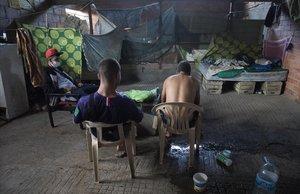 Alí, Toukif y Abdel, viven en una granja abandonada en Aitona (Segrià). Aquí lo único que importa es la fruta, dicen.