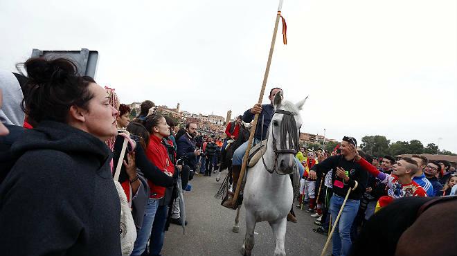 Imágenes de la manifestación de los grupos de interés en contra del torneo del Toro de la Vega.
