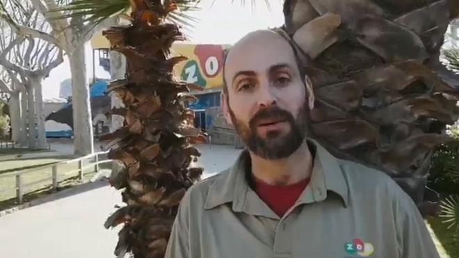 Los trabajadores del Zoo de Barcelona defienden su trabajo en un vídeo.