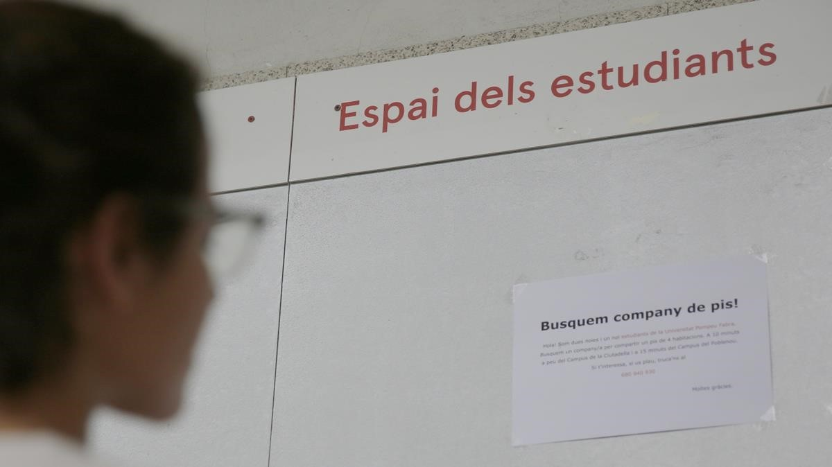 Una joven consulta ofertas de habitaciones de alquileren un plafón de la Universitat Pompeu Fabra de Barcelona.