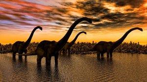 Recreación de un paisaje con dinosaurios.