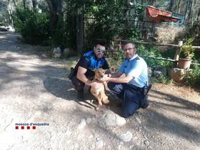Un agente de la policía municipal de Esplugues y otro de los Mossos, con la perra, Betty.