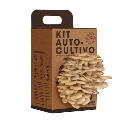 Kit Autocultivo setas