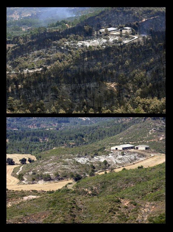Antes y después del incendio de Horta de Sant Joan cuando se cumplen diez años.