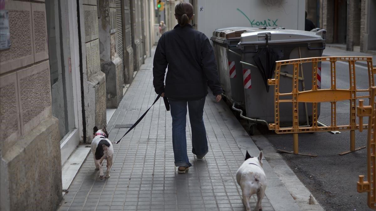 Un hombre pasea a dos perros por la calle.