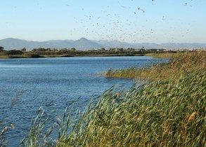 El reto del agua: combatir el cambio climático y generar ocupación de calidad