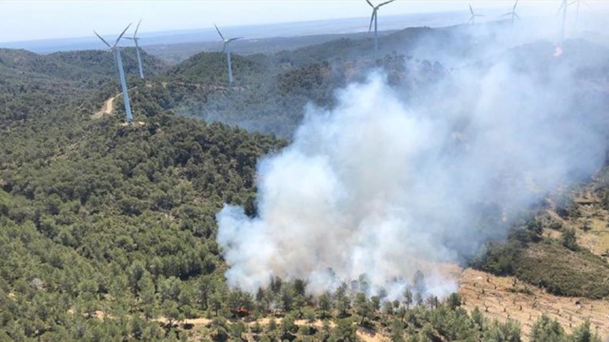 Incendio forestal en la Collada del Perelló, este lunes 10 de junio