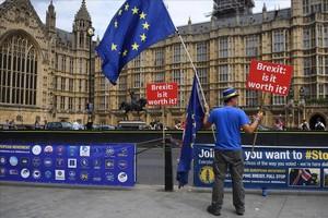 Protesta contra el brexit ante el Parlamento en Londres.