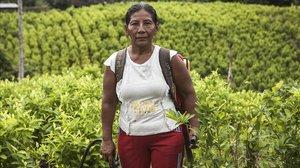 La vida silenciada de les dones cultivadores de coca