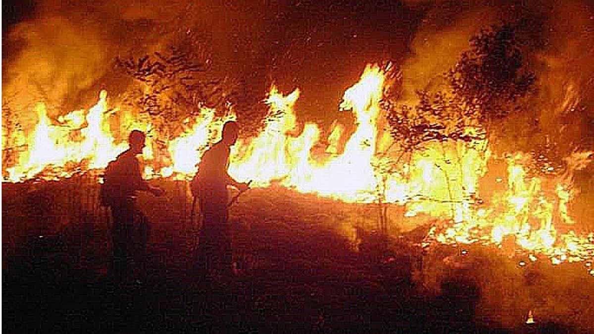Brasil despliega a miles de hombres para combatir los incendios en la amazonia.