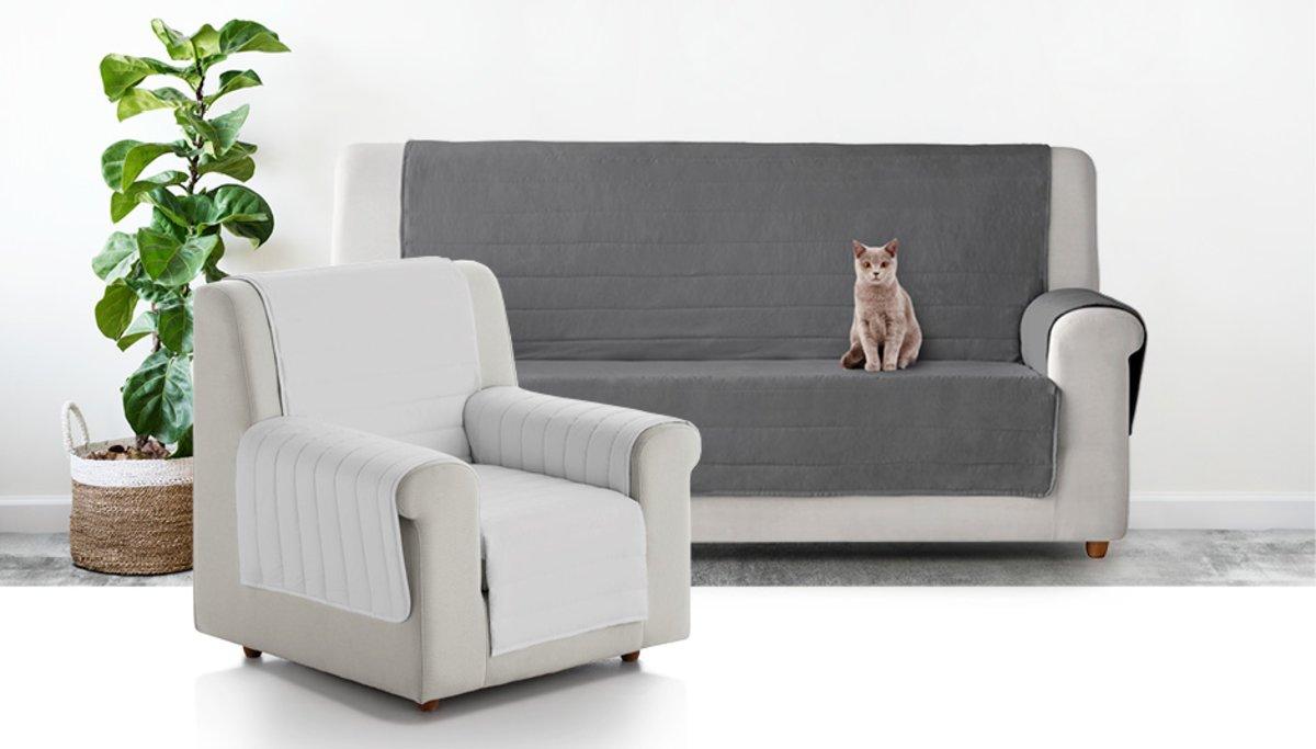 Tu sofá y butacas a salvo de mascotas