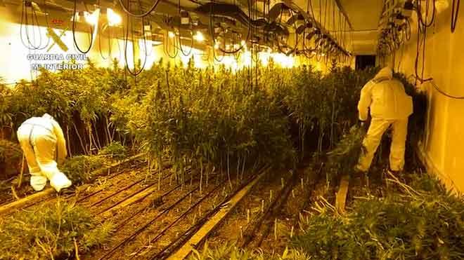 La Guardia Civil desmantela dos 'narconaves' de marihuana en Llinars del Vallès.