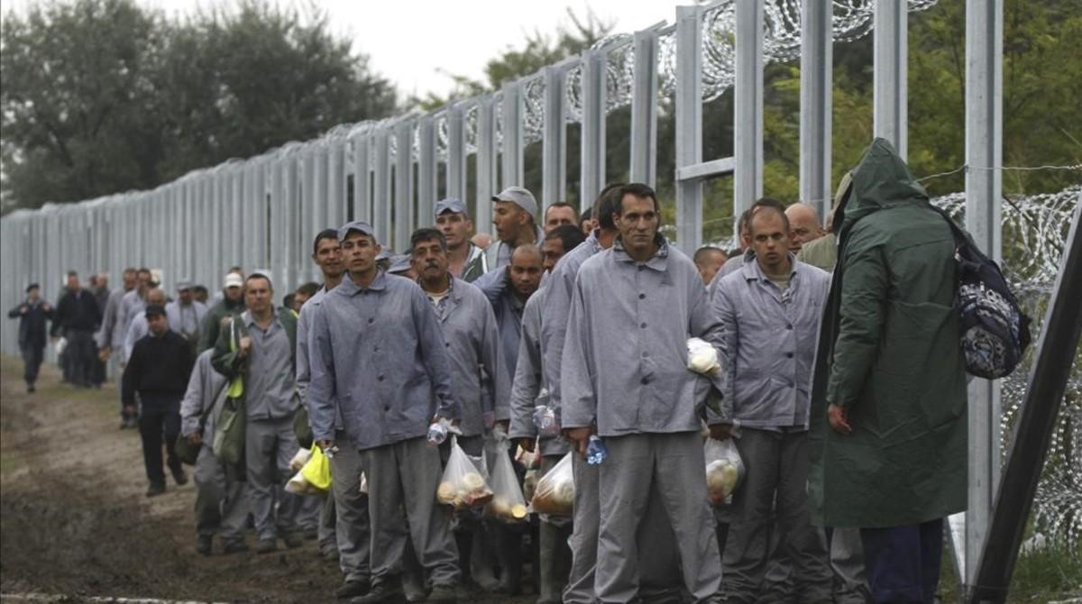 Internos de la prisión de alta seguridad de Csillag se disponen a completar la valla fronteriza entre Hungría y Serbia, cerca de la localidad húngara de Roszke, el 11 de septiembre del 2015.