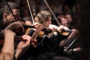 La música revela la magia de las redes humanas