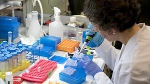 Imagen de un investigador científico durante su labor en el laboratorio.