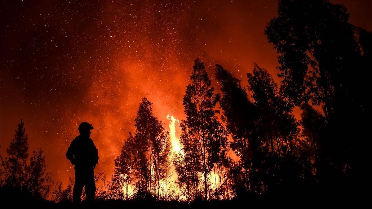 Un bombero, ante las llamas en Maçao, donde está el frente más activo del incendio.