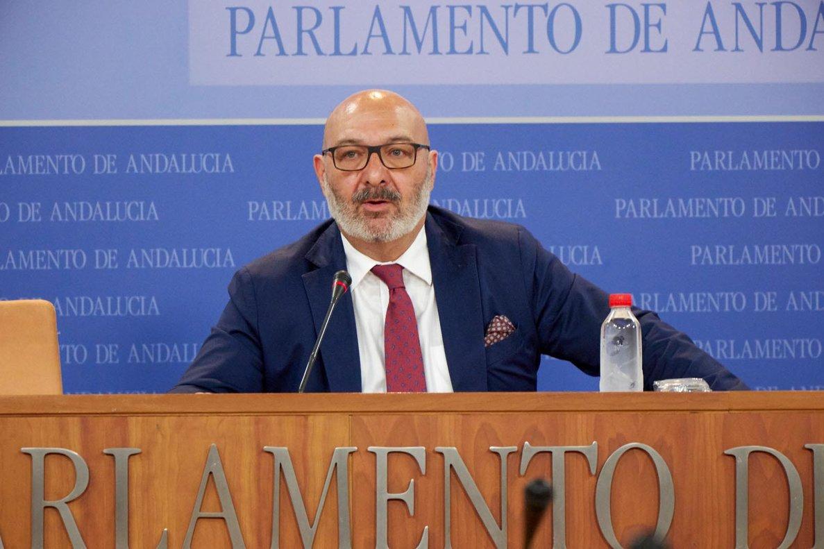 Alejandro Hernández, portavoz en el Parlamento andaluzde Vox Andalucía.