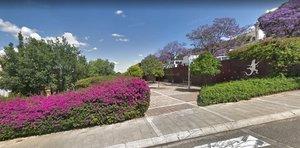 La Diputació elabora un pla per millorar el verd urbà de Sant Boi