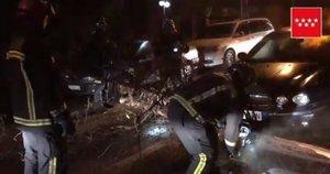 Los Bomberos de la Comunidad de Madrid retiran ramas de la carretera.