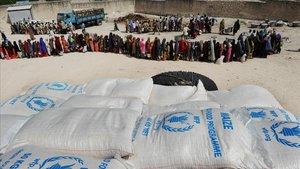 Desplazados somalís hacen cola para recibir alimentos del PAM, en un campo de Mogadiscio.