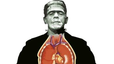 Últimas noticias sobre Frankenstein