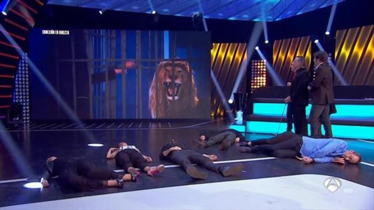 El león que asustó a Mario Vaquerizo, en el programa 'Hipnotízame', de Antena 3.