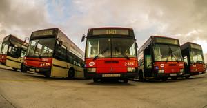 Los buses que el AMB y TMB han cedido a Gambia, antes de partir hacia el continente africano.