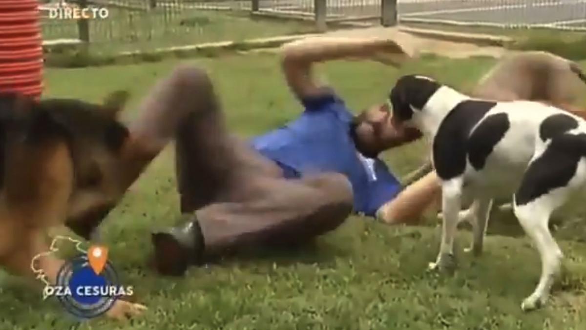 Momento en el que el cuidador patea al pastor alemán (a la izquierda) para zafarse de él.