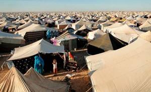Camp de desplaçats sahrauís