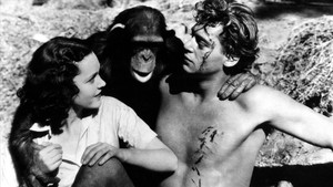 Johnny Weismüller, el hombre que cabalgó un rinoceronte, junto a Maureen O.Sullivan y Chita.