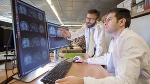 Un estudi de la Fundació Maragall troba singularitats cerebrals en persones amb risc d'Alzheimer