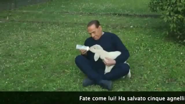 Silvio Berlusconi apareix en un vídeo cuidant i alletant cinc bens que ha adoptat.