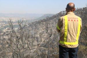 Un bombero observa la zona quemada en Capellades.