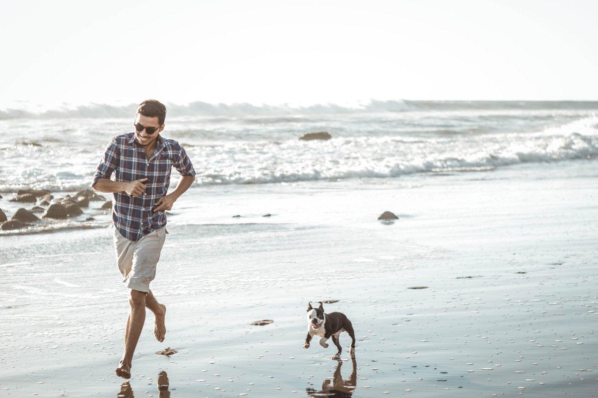 Cada vez son más las personas que eligen aquellos destinos a los que pueden viajar con su mascota.