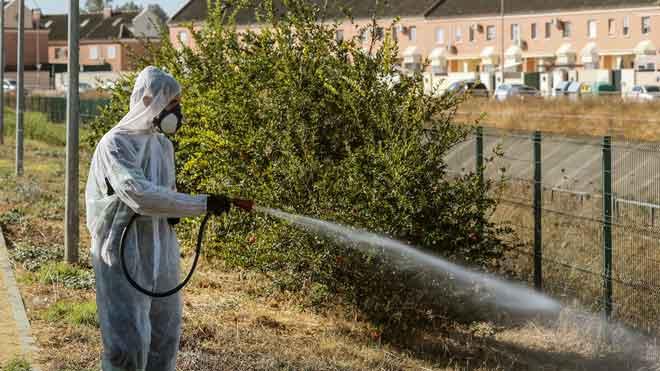 Coria del Río fumiga zones verdes i parcs per lluitar contra el virus del Nil
