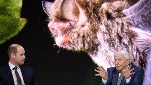 El príncipe Guillermo y David Attenborough en el Foro Económico Mundial de Davos.
