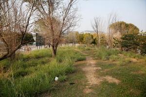 Área de 700 metros en el cruce de las calles de Ferran Junoy y Tucumán donde se construirá el espacio de recreo para perros.