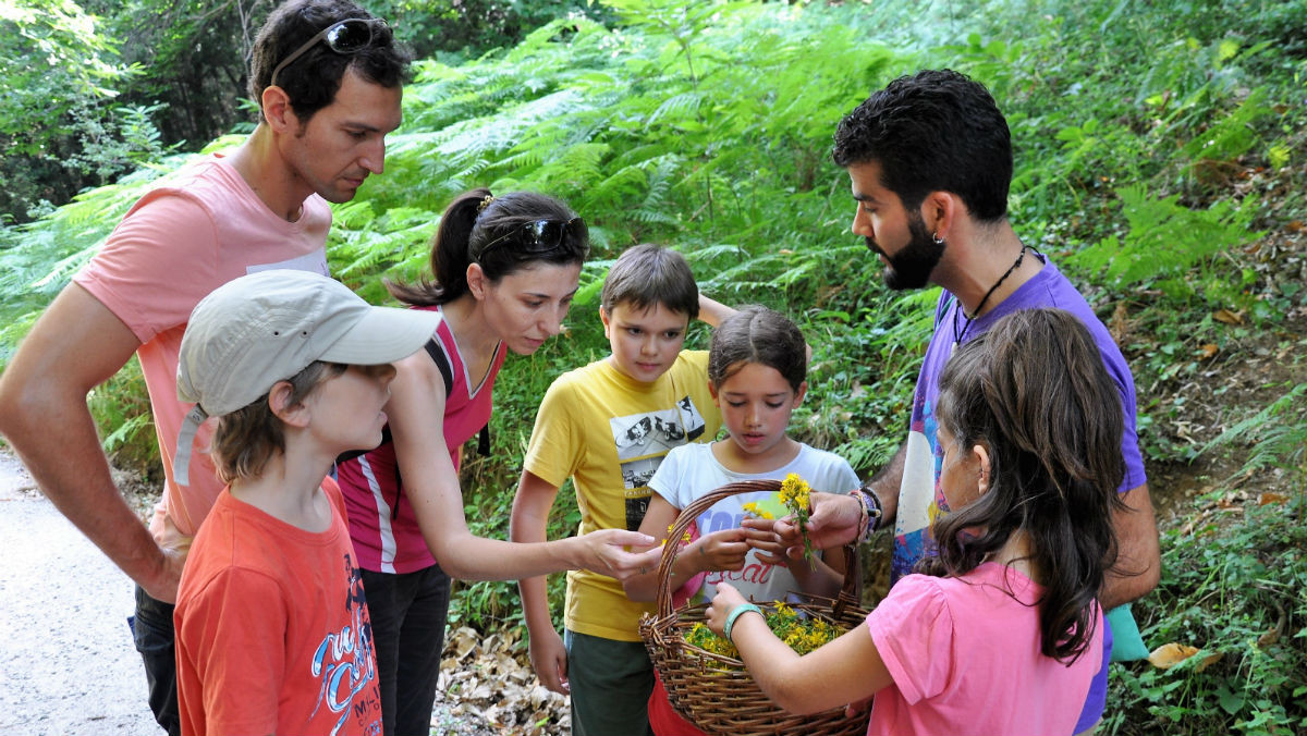 Participantes de la estancia en la casa de naturaleza de La Traüna observan las flores recogidas.