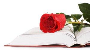¿Seguirà la tradició de Sant Jordi i comprarà avui un llibre o una rosa?