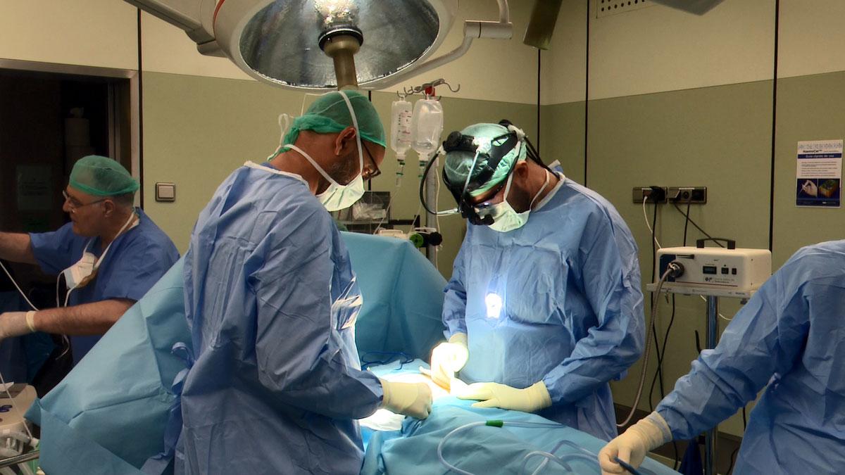 España e Italia hacen su primer trasplante cruzado internacional de riñón.