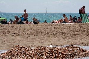 Gavà estableix un tram de platja lliure de fum i incentiva l'ús de vasos reutilitzables