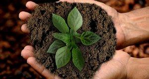 La sostenibilidad es rentable para las empresas en el largo plazo.
