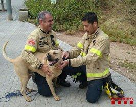 Nuc, junto a los bomberos que le han rescatado.