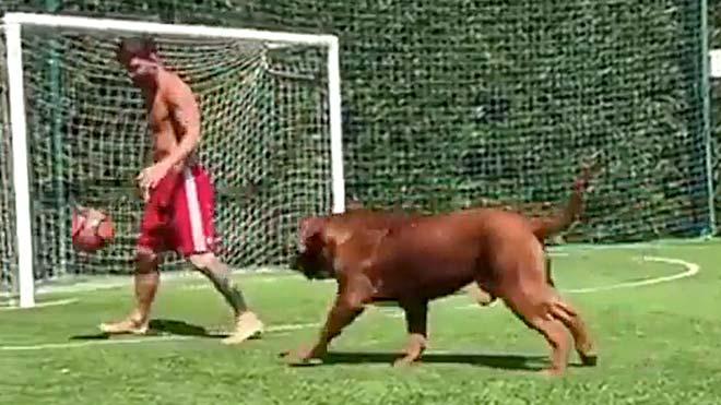 Messi jugando con su perro