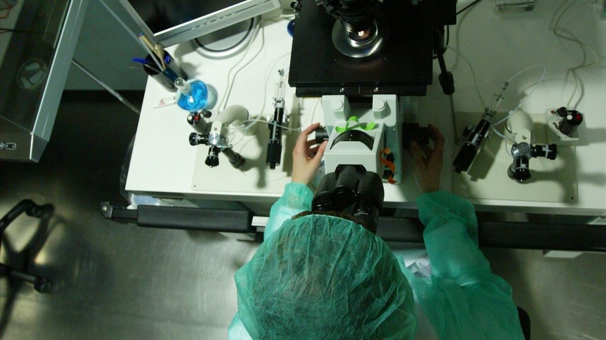 Sala de embriones de una clínica de fertilidad.