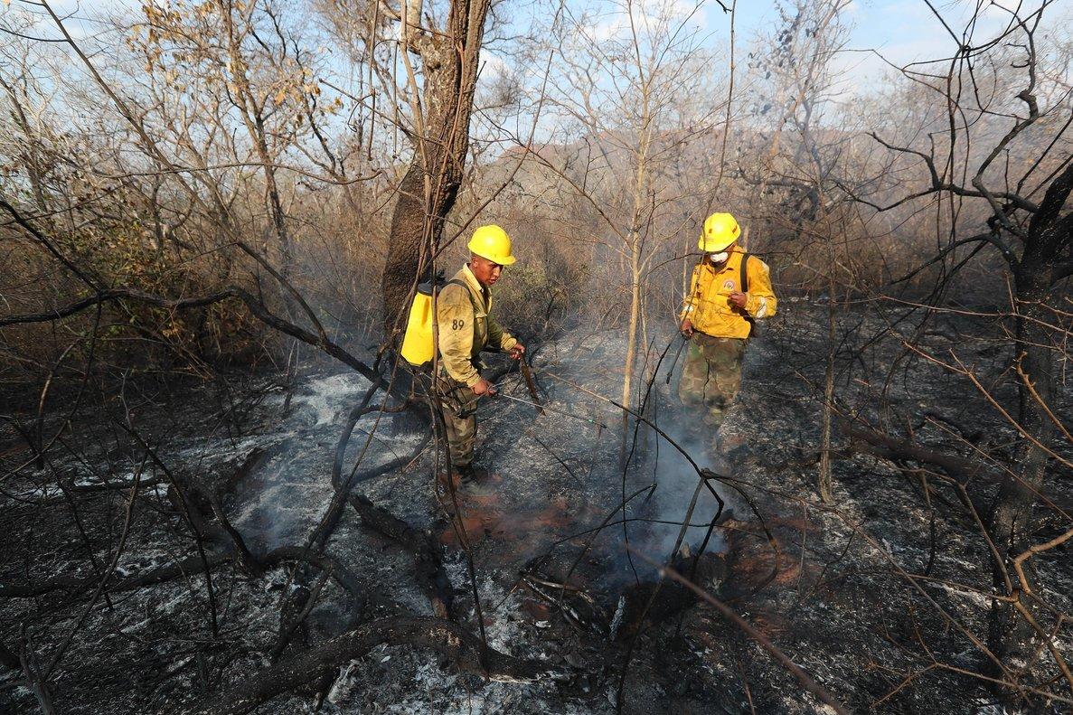 ACOMPAÑA CRÓNICA: AMAZONÍA INCENDIOS - AME990. SAN JOSE DE CHIQUITOS (BOLIVIA), 28/08/2019.- Soldados bolivianos aplacan un incendio el 27 de agosto de 2019 en la región de San José de Chiquitos (Bolivia). Los incendios en la región de la Chiquitania boliviana no dan tregua a las cuadrillas formadas por soldados, bomberos y voluntarios que a diario deben vencer los obstáculos del bosque seco para ingresar a los sectores donde los fuegos pueden volver a brotar. Grupos de voluntarios se hacen de mochilas antiincendios y herramientas, además de los accesorios para recorrer kilómetros y liquidar los fuegos que todavía persisten. EFE/ Martin Alipaz
