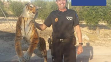 La sorprendente campaña de la Policía de Murcia con un tigre para concienciar contra el cáncer infantil